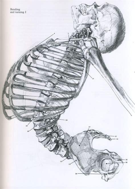 skeleton pattern in casting animation 34 best skeleton references images on pinterest bones