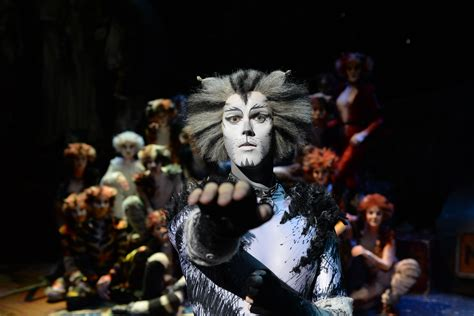 cats musical theatre review cats the musical superbreak