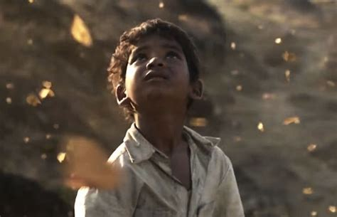 film butterfly lion eye for film sunny pawar in lion