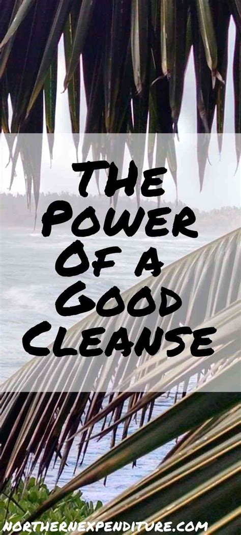 The Power Of Detox by The Power Of A Cleanse Northern Expenditure