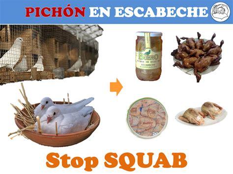 acabemos  el maltrato  las palomas palomas como comida