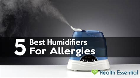 humidifiers  allergies sinus problems asthma