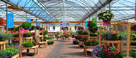 garden centre quality plants supplies johnstons