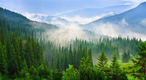 mountain vt green mountain national forest vt list destinations pint