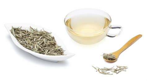 Teh White Tea 5 macam teh yang harus kamu minum setiap hari supaya sehat health bintang