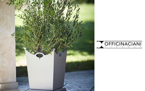 albero in vaso vaso per albero vasi decofinder
