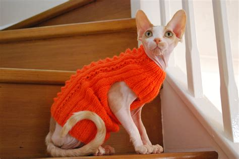 knitted cat sweater pattern knit sweatermerino wool knitted sweater for small dogs