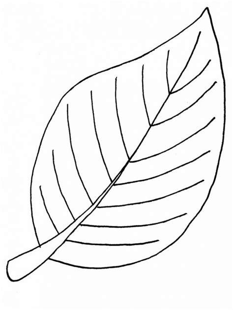 imagenes para colorear hojas dibujos de hojas dibujos