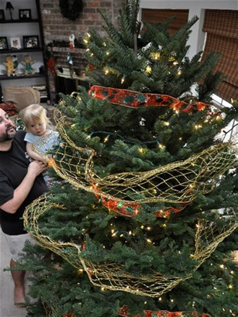 a plea for real trees the true history of christmas trees
