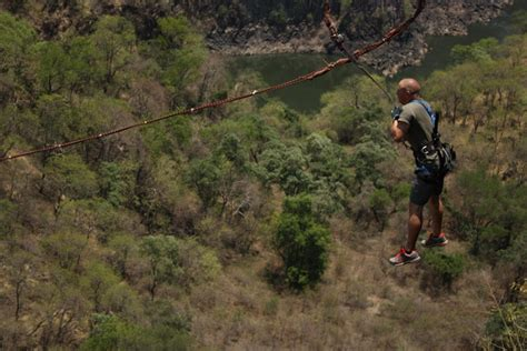 zambezi swing gorge swing incl free sunset cruise zambezi eco adventures