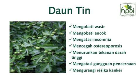 Teh Janna Tea Hpai janna tea hpai teh premium quality teh menyehatkan organik