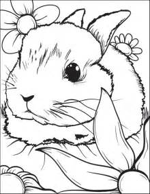 free printable coloring pages rabbit bunny coloring pages best coloring pages for