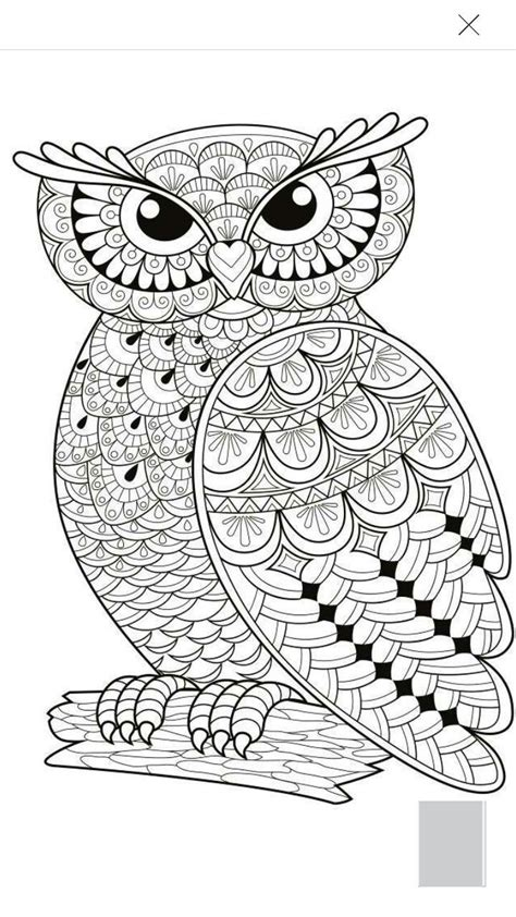 intricate owl coloring pages mandala owl coloring page www imgkid com the image kid