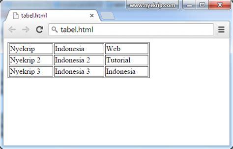 membuat warna border tabel html cara membuat tabel html 5 dengan css nyekrip