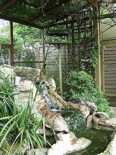 Outdoor Finch aviary complete with waterfall from