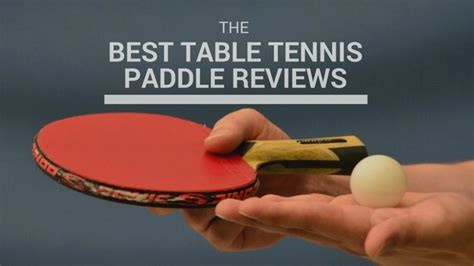 best depth and table best table tennis paddle 2018 buying guide in depth