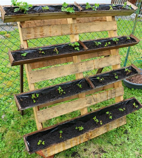 Strawberry Planter Boxes by Container Gardening Strawberry Planter Using Pallet