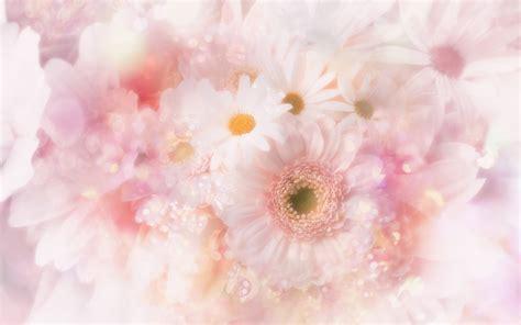 wallpaper flower cute cute pink flowers wallpaper 1440x900 22756