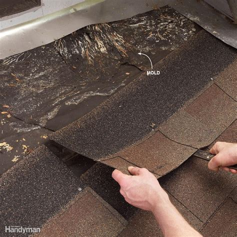 common roof leak causes damaging a roof repair or replace your roof roof if youu0027ve