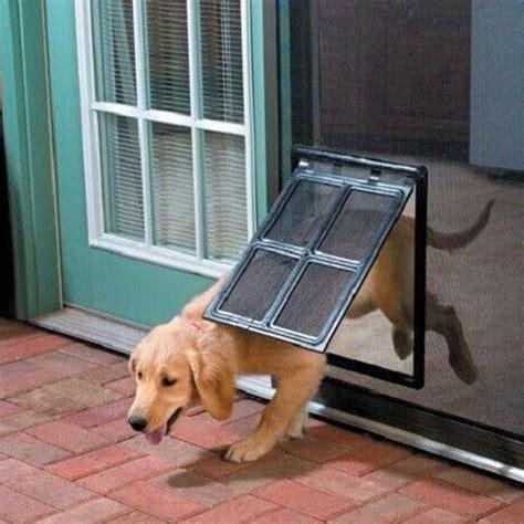 screen door protector for dogs security doors melbourne made to fit by valesco security doors