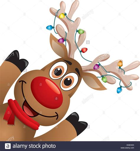 rudolph the nosed reindeer rudolph nosed reindeer stock photos rudolph