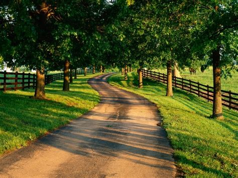 country road country driveways pinterest
