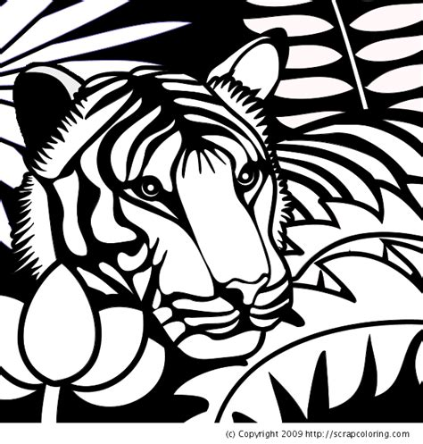 coloring pages of the jungle jungle coloring pages 1 coloring kids