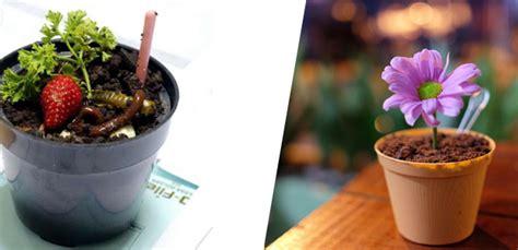 membuka usaha es krim pot tips untuk penjual pembeli es krim pot etalasebisnis com