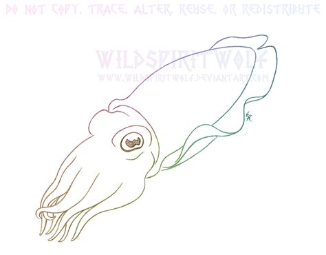 How To Draw Cuttlefish Cuttlefish Coloring Pages
