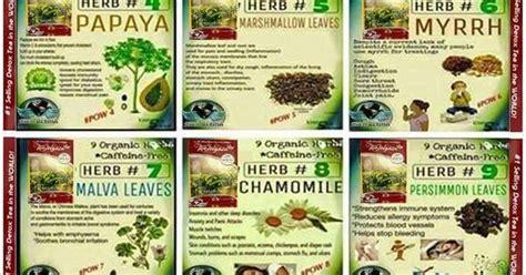 Detox Spills The Tea by What Are The Ingredients In Vida Divina S Original Tea