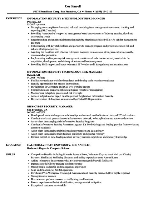 aviation technician resume examples project manager sample pilot