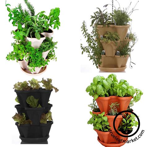 indoor gardening kits vegetables 100 indoor vegetable garden kit garden seed starter diy