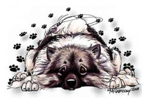 Wolfsspitz Aufkleber by Hundeaufkleber Karikatur Aufkleber Keeshond Wolfsspitz