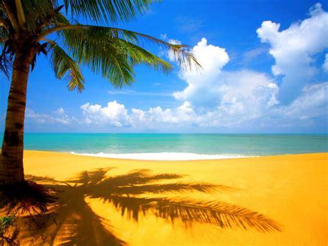 Imagenes De Paisajes Tropicales   paisajes tropicales taringa