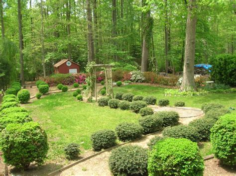 how to flatten backyard recomended landscaping ideas backyard mosquito