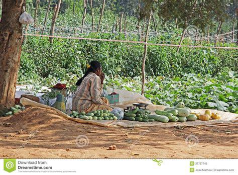 roadside fresh vegetable vendor  india editorial image