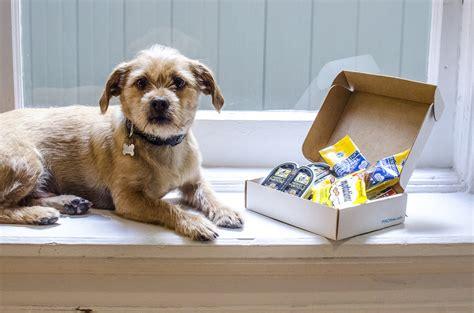 puppy palooza puppy palooza rewards