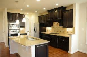 Kitchen Design With Dark Cabinets dark cabinetry kitchen design