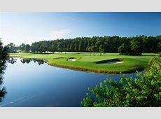 Disneys Palm Golf Course 29 Palms Orlando
