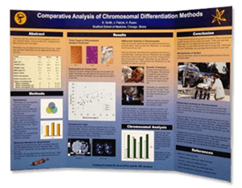 Scientific Poster 36 X 54 Tri Fold Poster Makesigns Com Scientific Posters Tri Fold Poster Board Template