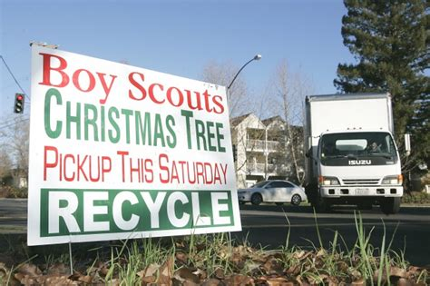 boy scouts tree recycling boy scout tree drive set for saturday local news