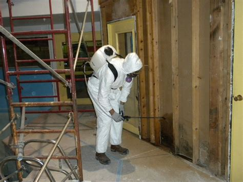 mold remediation in columbia md 443 961 2725