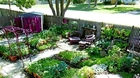 How To Build A Backyard Garden Top 10 Tips For Urban Homesteading Besurvival