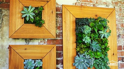 gorgeous diy framed succulent planters  table  wall