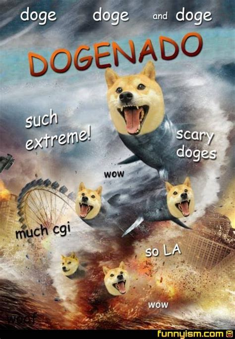 Such Doge Meme - doge on twitter quot wow such tornado very sharks so bad