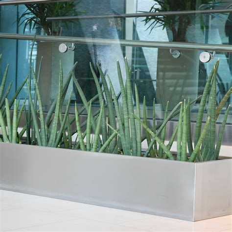stainless steel trough planter