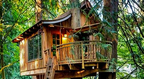 cool tree house designs amusement parks news 187 cool tree house ideas by headrush technologies