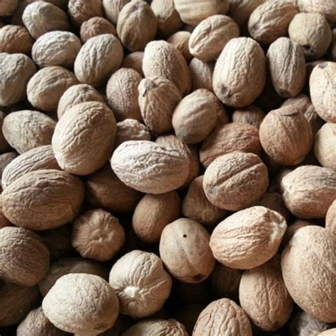 Cengkeh Basah Kering jual buah pala basah kering harga terkini agromaret