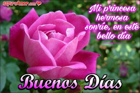 imagenes de buenos dias mi reina hermosa bonitas rosas con frases de amor para dar los buenos d 237 as