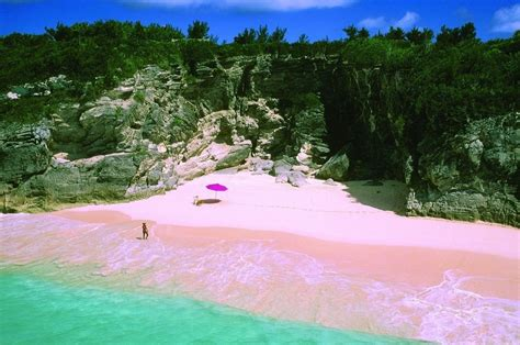 beaches with pink sand pink sands beach harbour island bahamas feel the planet